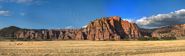 Jo-Oerter-Valley-of-Fire.jpg